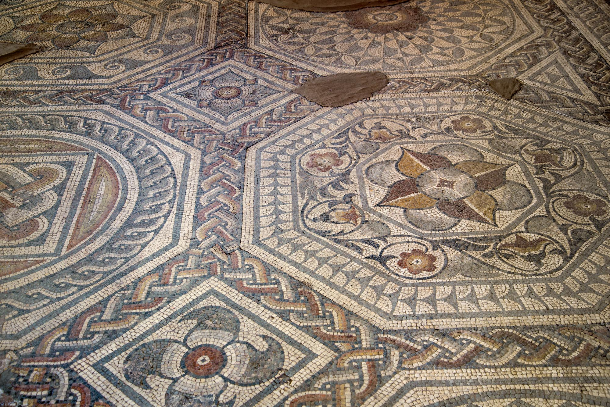 Part of the 2nd-century Blackfriars Mosaic discovered in 1832 at Jewry Wall Street, now beneath the former Leicester Central railway station. Originally preserved in its original location, it was moved to Jewry Wall Museum in the 1976 and is currently in storage -