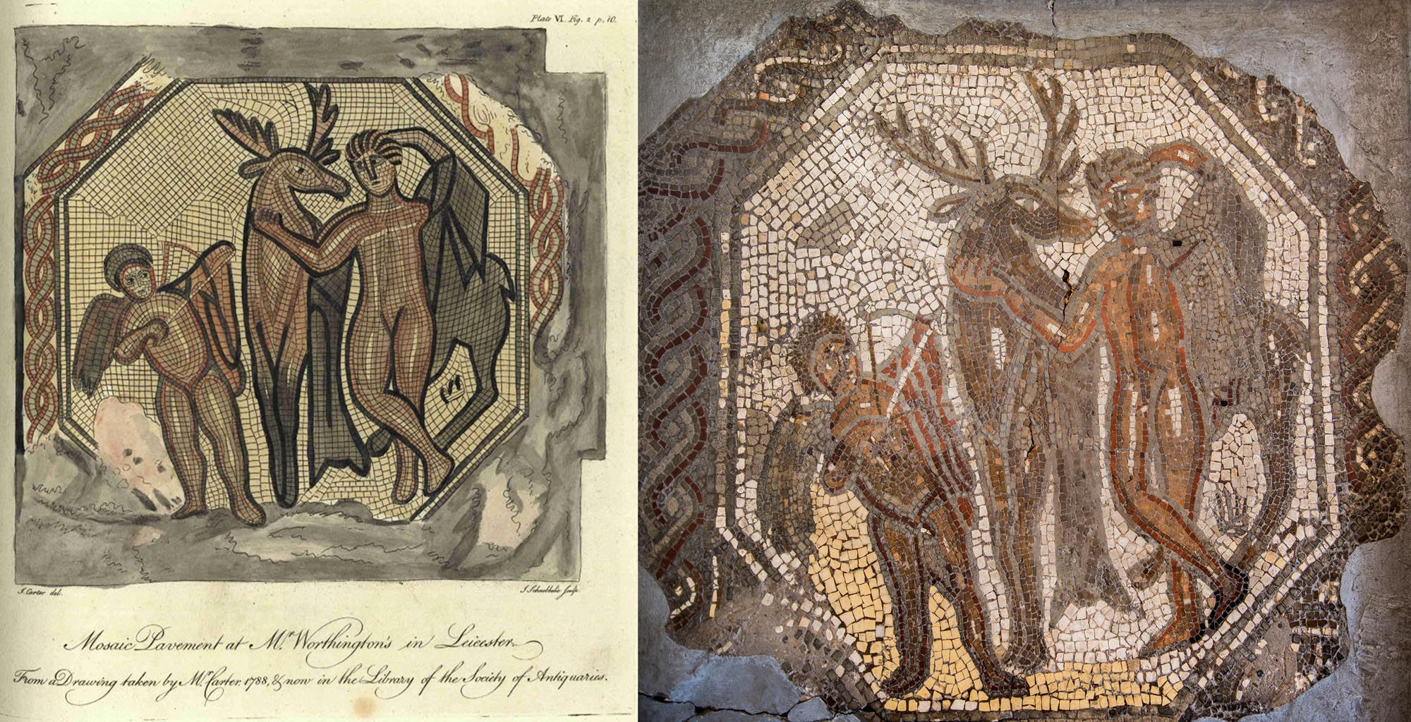 Left, An early drawing of the Cyparissus mosaic by S. Carter in 1788. Right, The Cyparissus mosaic, found on Highcross Street in Leicester in c.1675. The mosaic is one of the earliest recorded mosaics in Britain -