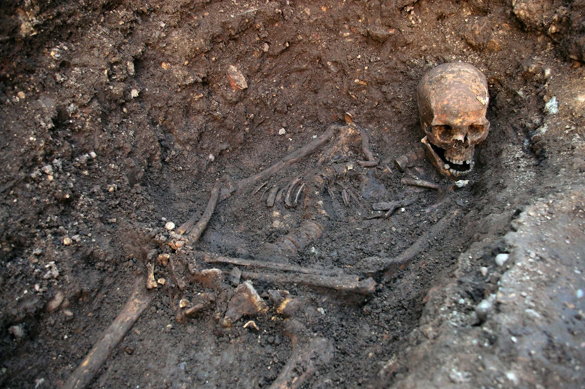 Richard III's remains in situ in his grave shortly after their discovery in 2012 - University of Leicester